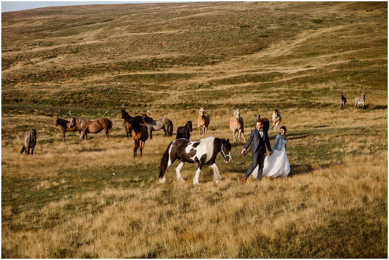 horse elopement
